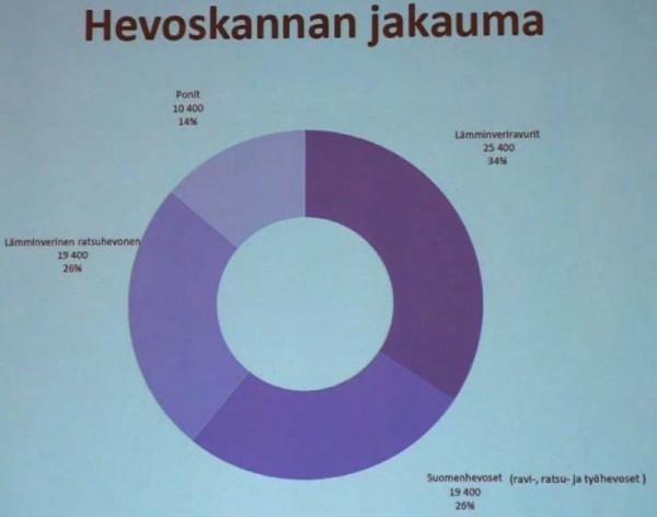 hevoskannan jakauma Suomessa