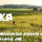 tausta_kesa